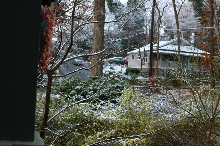 snow - 10 feb 2011