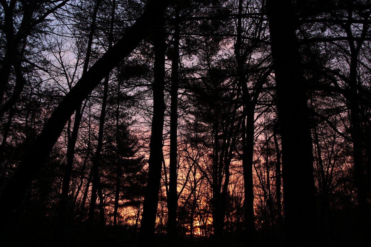 sunrise - 15 jan 2014
