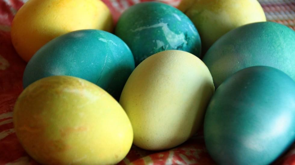 eggs - 5 apr 2015