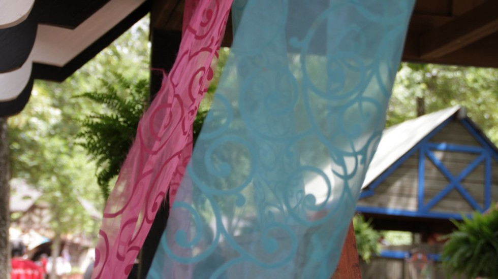 renfest - 16 may 2015