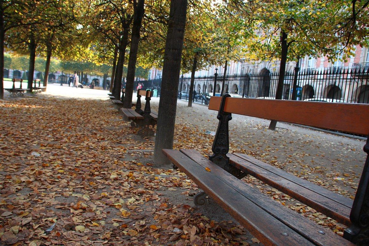 place des vosges - 11 oct 2015
