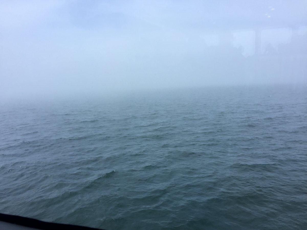 fog - 28 jul 2017