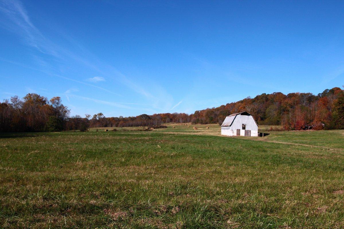 farm - 20 nov 2017