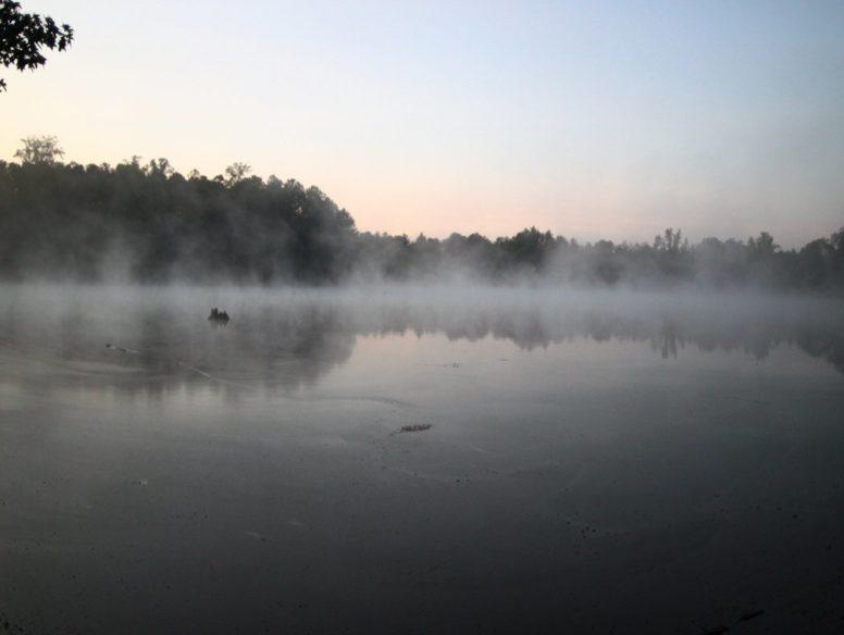 mist - 8 dec 2017